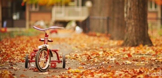 tricycle-romantic-child-hood-nostalgia-facebook-cover-564x272